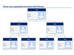 Organizational Charts In Editable Powerpoint  Organizational