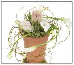 protea and callas make a striking statement