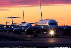 Evening lineup