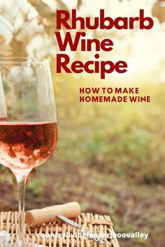 How to make homemade Rhubarb Wine. Easy instructions to make your own wine at home. Full recipe and step by step. DIY at it's finest! Homemade Wine Recipes, Homemade Alcohol, How To Make Sauce, How To Make Homemade, Rhubarb Wine, Wine Making Kits, Make Your Own Wine, Empty Wine Bottles, Healty Dinner