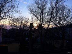 Beautiful morning