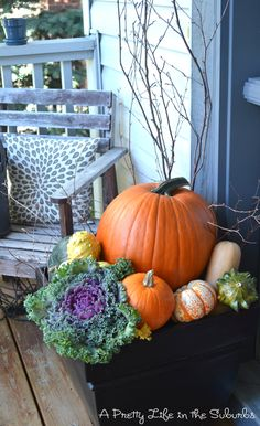 Gourd-geous! Putting Together My Fall Porch - A Pretty Life In The Suburbs #spon