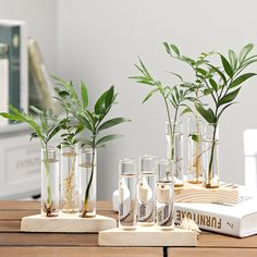 Bottles, Jars & Boxes Strict Transparent Tube Glass Hydroponic Room Plant Flowerpot Tabletop Plant Bonsai Decoration Crafts Metal Flower Rack Art Vase Frame Available In Various Designs And Specifications For Your Selection Ornaments