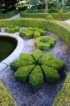 Boxwood Topiary - i want this in my garden! Boxwood Garden, Topiary Garden, Boxwood Topiary, Garden Paths, Garden Art, Garden Landscaping, Formal Gardens, Outdoor Gardens, Amazing Gardens