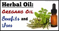 Oregano oil, which comes from the fragrant herb commonly used for flavoring food, offers practical uses and health applications.  http://articles.mercola.com/herbal-oils/oregano-oil.aspx