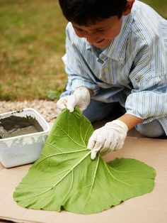 Lay Large Leaf Out Flat with Veiny Side Up