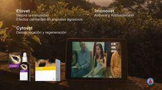 Energy Universe 26. El caballo de Mireia in Detrás del Espejo Producciones Audiovisuales on Vimeo