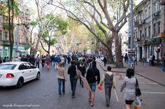 Pro-Ukrainian activists on the move to Kulykove pole in Odessa