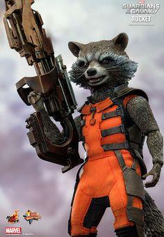 Raccoon moive sex