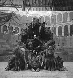 Russian circus, early 20C