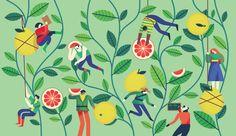 Tea 2016 - Owen Davey Illustration