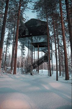 This Treehouse Hotel In an Isolated pine forest in Lapland, Sweden Lets You Sleep Under The Northern Lights // Bored Panda Nature Architecture, Architecture Company, Architecture Design, Container Hotel, Beautiful Tree Houses, Luxury Tree Houses, Treehouse Cabins, Treehouses, Treehouse Living