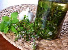 JE LIBO BYLINKOVÝ OLEJ NEBO OCET ? Healing Herbs, Korn, Pesto, Terrarium, Plants, Terrariums, Plant, Medicinal Plants, Herbal Medicine