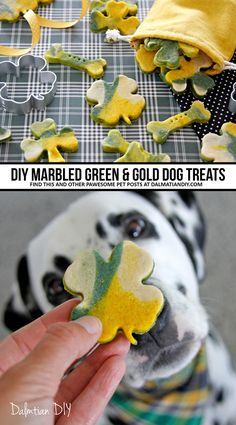 Marbled Green and Gold St. Puppy Treats, Diy Dog Treats, Homemade Dog Treats, Dog Treat Recipes, Healthy Dog Treats, Dog Bakery, Green And Gold, St Patricks Day, Make It Yourself