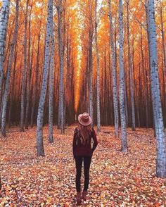 autumn photography 15 Fall Photoshoot Ideas To Get Some Serious Inspo Autumn Photography, Amazing Photography, Portrait Photography, Halloween Photography, Newborn Photography, Street Photography, Travel Photography, Photography Composition, Iphone Photography
