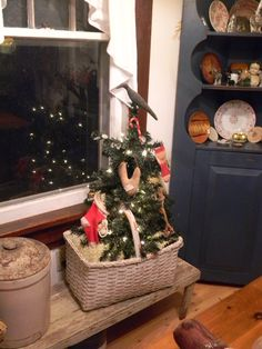little tree in a basket in my b'fast nook ~ ©notforgotten farm