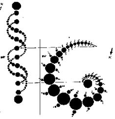 Two Views of the same Fractal By Kris (Weber) Sherwood.  Much like a Julia Set