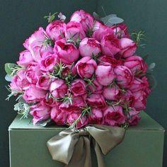 * ... ✤ॐ ♥ ▾ ๑♡ஜ ℓv ஜ ᘡlvᘡ༺✿ ☾♡ ♥ ♫ La-la-la Bonne vie ♪ ❥•*`*•❥ ♥❀ ♢♦ ♡ ❊ ** Have a Nice Day! ** ❊ ღ‿ ❀♥ ~ Su 22nd Nov 2015 ... ~ ❤♡༻ ☆༺❀ .•` ✿⊱ ♡༻ ღ☀