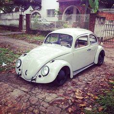 Callook Bad bug Volkswagen Beetles, Vw Bugs, S Car, Car Tuning, Vw Camper, Hot Cars, Cars Motorcycles, Antique Cars, Porsche