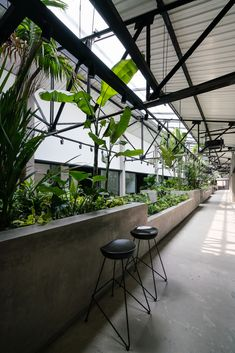 Gallery of Jungle Station / G8A Architecture & Urban Planning - 11