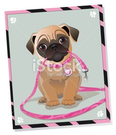 Cute Pug Dog Holding Leash Royalty Free Stock Vector Art Illustration