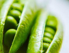 #HTCGreen #Green #Food #HTC