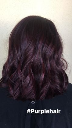 Dark Purple Hair Color, Hair Color Shades, Ombre Hair Color, Dark Violet Hair, Purple Brown Hair, Ash Brown, Burgundy Plum Hair, Purple Tinted Hair, Dark Fall Hair Colors