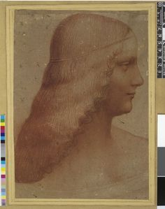 After Leonardo da Vinci - 1467-1519 - Milan, Florence Leonardo Da Vinci Biography, Mexican Skulls, School Style, Etchings, Brown Paper, 14th Century, Renaissance, Medieval, Art Drawings