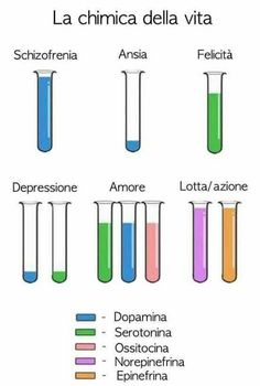 not an idea but i like this. May your serotonin, dopamine and oxytocin… not an idea but i like this. May your serotonin, dopamine and oxytocin… Pharmacology, Ap Psychology, Abnormal Psychology, Stress, Fight Or Flight, Schizophrenia, Anatomy And Physiology, Nurse Life, Rn Nurse