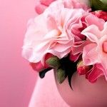 Luscious pink flowers.  Live lusciously with LUSCIOUS: www.myLusciousLife.com