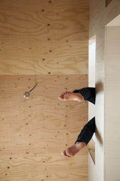 Ant-house / mA-style architects