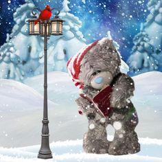 ♥ Tatty Teddy ♥ Source by Teddy Images, Teddy Bear Pictures, Tatty Teddy, Bear Graphic, Blue Nose Friends, 3d Christmas, Love Bear, Cute Teddy Bears, Pet Birds