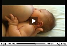 Amazing latch videos from Jack Newman's Intl Breastfeeding Center - a great resource for breastfeeding moms