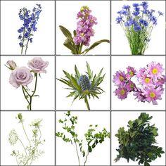 (Purple & Blue) Wildflower Pack -Bulk Wedding Flowers