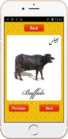 urdu animal names