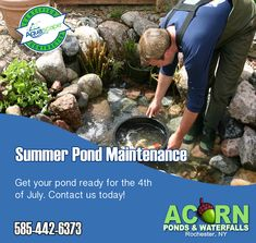 Summer is here in Rochester (NY) and you've earned some quality time in your backyard with your fish pond and Acorn Ponds & Waterfalls has you covered with our scheduled water feature & koi fish pond maintenance services. Koi Fish Pond, Fish Ponds, Ponds Backyard, Backyard Landscaping, Pond Algae, Raised Garden Planters, Pond Maintenance, Pond Waterfall, Pond Water Features