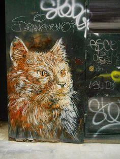 C215 -  Street art