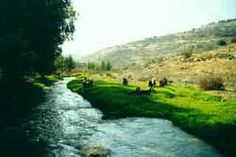 The Jordan River - The cultural and religious significance of the Jordan River is equal to that of its modern practical uses.