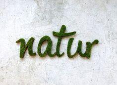 Du willst auch so ein Moos-Graffiti? Hier erfährst du, wie einfach das geht: http://www.gofeminin.de/wohnen/gartendeko-selber-machen-s1547821.html