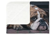 Personalised Photo Blanket in TOP Quality. http://www.my-picture.co.uk/personalised-photo-blanket/ #mypicture #personalisedphotoblanket #photoblanket #giftideas