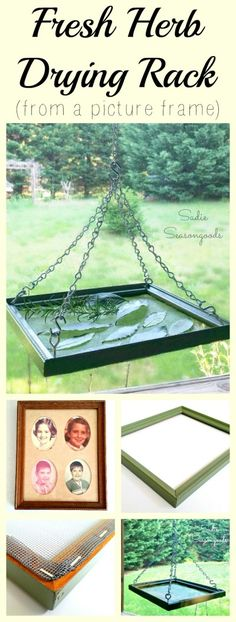 Upcycled Crafts Outdoor Thrift Stores - DIY Fresh Herb Drying Rack from a Repurposed Thrift Store Picture Frame. Hanging Drying Rack, Herb Drying Racks, Diy Hanging, Drying Herbs, Diy Garden, Garden Projects, Herb Garden, Diy Projects, Vintage Picture Frames