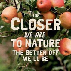 the closer to nature they better off we'll be ♡ Closer To Nature, Get Healthy, Mother Nature, Mother Earth, Wise Words, Me Quotes, Food Quotes, Nature Quotes, Mindfulness