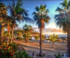Costa Adeje, Tenerife. One of the most beautiful places I have lived in. Hope to go back one day!