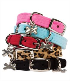 Ultrasuede Dog Collars by Susan Lanci. This has an actual buckle. Imagine that.