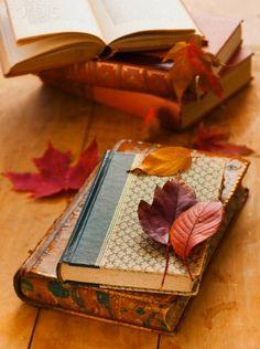 Autumn leaves on books,
