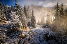Tatra Mountains, mountains, clouds, fog, hiking, landscape, landscape mountains, forest, winter, tree
