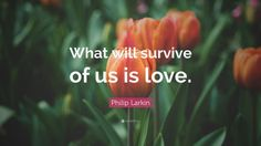 "Philip Larkin Quote: ""What will survive of us is love."""