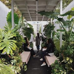 """WEBSTA @ haarkon_ - Making friends with strangers in the truly urban jungle that is the #ConnectSpace of #AsifKhan 's """"Forest's"""" installation for #MINILiving at #ldf16#YourSideOfTown #thirdplaceliving #londondesignfestival #urbanarchitecture #livingwithplants #london #Haarkon #ad #urbandesign #plantsofinstagram #plantgoals #conservatoryarchives #interiorgoals #instagardenlovers #instagarden #outsidein #naturegram #coloursofnature #archilovers #archdaily #plantsmakepeoplehappy #greenedit…"""