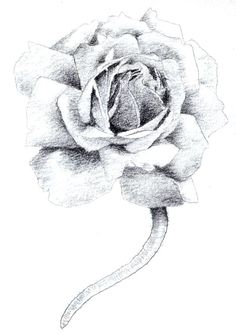 Álbum de imágenes para la inspiración (pág. 101) | Aprender manualidades es facilisimo.com