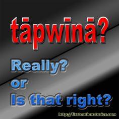 Various Cree Memes with Audio Aboriginal Language, Aboriginal Education, Native American Symbols, Native American Photos, Native Humor, My Ancestry, Indian Pictures, Language Lessons, Second Language